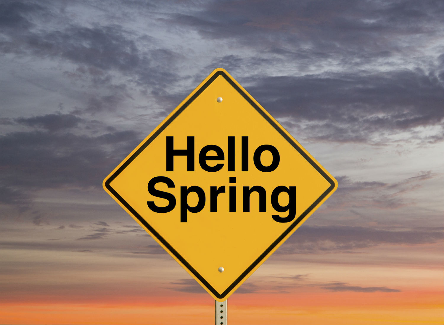 Forget January, spring is the most popular time to move jobs!